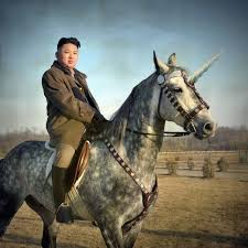 unicorn kim jong un